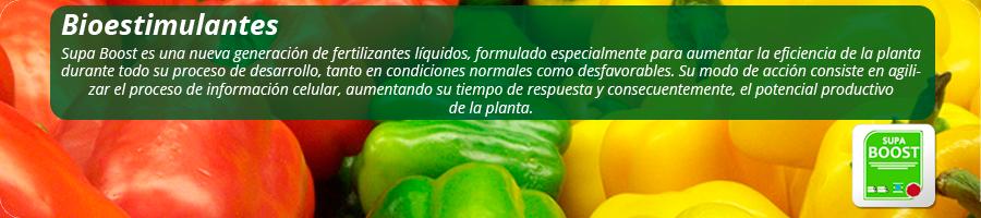 Generación de fertilizantes líquidos formulados para aumentar la eficiencia de la planta durante todo su proceso de desarrollo.