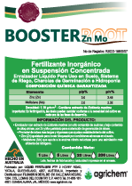 Booster Root