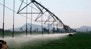 Los beneficios del riego tecnificado a la agricultura