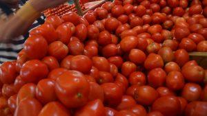 Productores mexicanos acusan error en metodología en investigación de EU sobre dumping de tomate