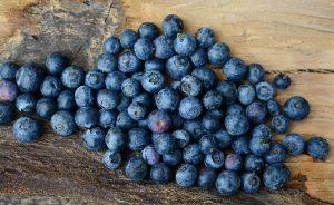 Van por cultivo de berries en Oaxaca
